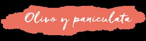 Logo Olivo Y paniculata