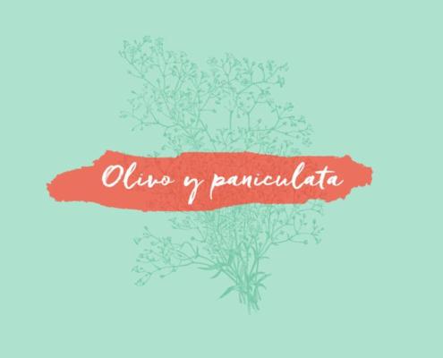 Comienzo de Olivoypaniculata
